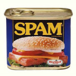 What Google's Webspam Team Will Tackle in 2009?