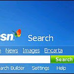 MSN The Ultimate SEO Training Ground