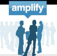 link building amplify