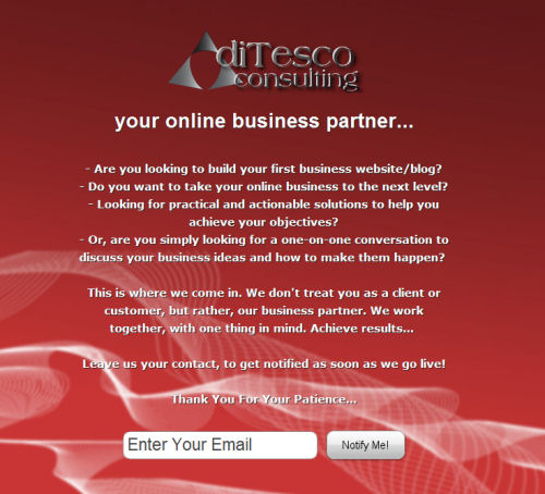 ditesco consulting