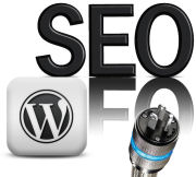 wordpress seo plugins 2012