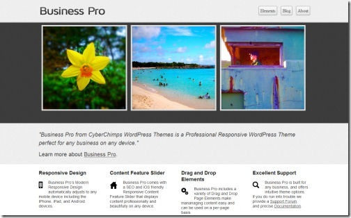 Business PRO Responsive Theme