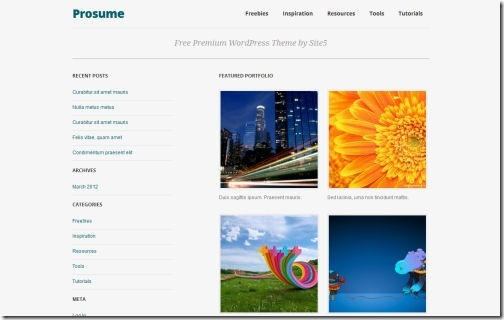 Prosume Responsive Themes