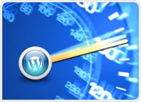 fast wordpress site