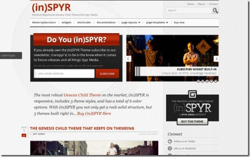 (in)SPYR Responsive Theme