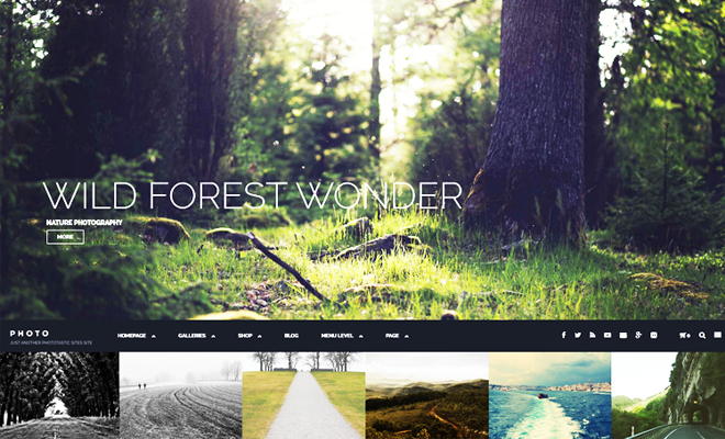 Phototastic WordPress Theme