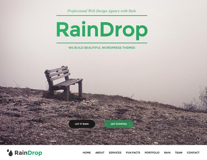 RainDrop WordPress Theme