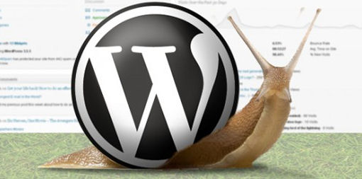 slow wordpress site