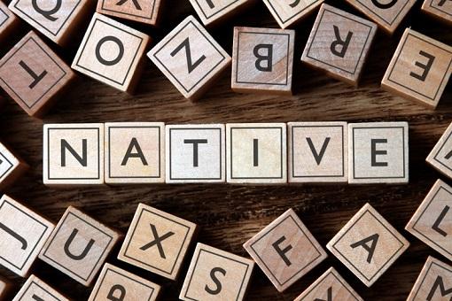 native-advertising