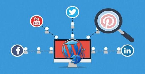 wordpress plugins social media marketing