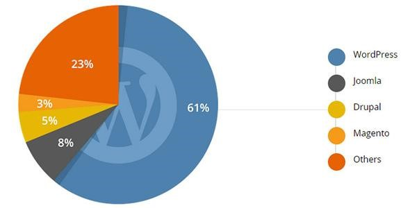 Advantages And Disadvantages Of Using Wordpress