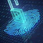 Ways to Verify Identity for Small Business Owners